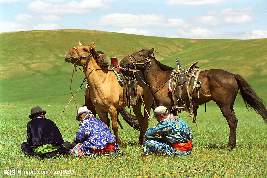 壁纸 草原 动物 马 骑马 桌面 1024_683